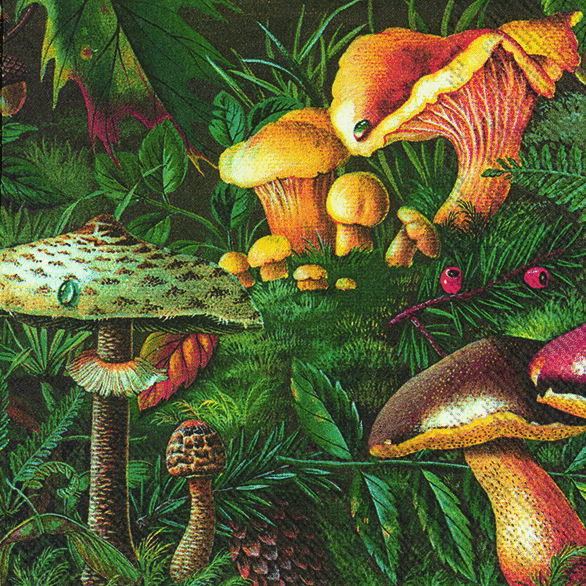 Forest Mushrooms Waldpilze Lunchserviette IHR